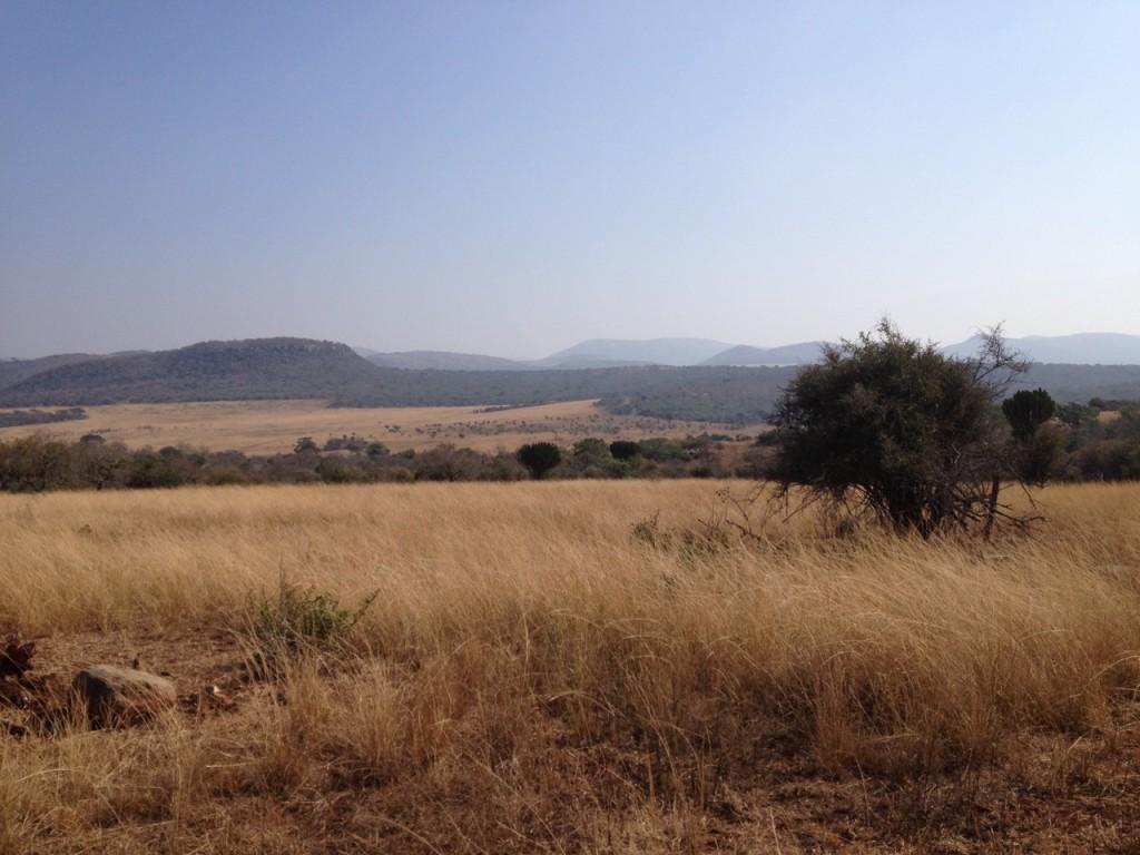 africa zululand